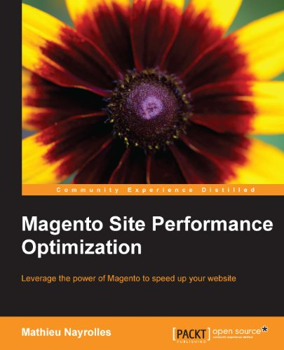 Livre Magento Performance Optimization